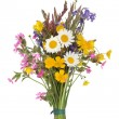 Wild Flower Posy - Stock Photo