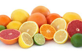 Citrus Fruit Selection — Stock Photo