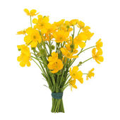 Buttercup Flower Posy — Stock Photo