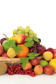 Tropical, Citrus and Berry Fruit — Stock Photo