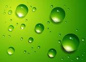 Water drops vector background. — Stock Vector
