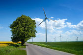 Summer landscape with windmills — Stock Photo