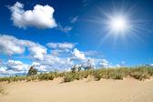 Sandy dunes — Stock Photo