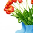 Stock Photo: Fresh tulips in boots