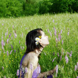 Woman in the meadow — Stock Photo #3326969