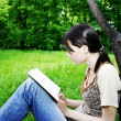 Royalty-Free Stock Photo: Young woman reading a novel
