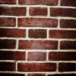 Brick wall background — Stock Photo #3556681