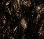 Capelli umani — Foto Stock