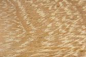 текстура древесины ироко — Стоковое фото