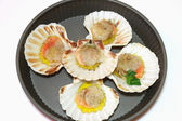 Seafood scallop — Stock Photo