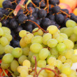Stock Photo: White and black grapes