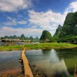 Li river karst mountain landscape — Stock Photo