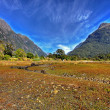 Stock Photo: Milford Sound