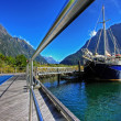 Milford Sound — Stock Photo #3366973