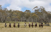 Group of horseriders — Stock Photo