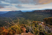 The Blue Mountains — Stock Photo