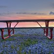 Lakeside bench — Stock Photo #3370686