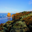 Coastal cliff landscape — Stock Photo #3373111