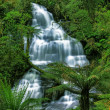 Green waterfall - Stock Photo