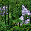 Green waterfall — Stock Photo