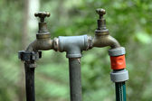 Garden water taps — Stock Photo
