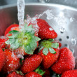Rinsing Strawberries — Stock Photo