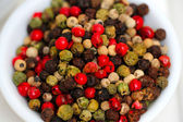Gourmet Rainbow Peppercorns — Stock fotografie