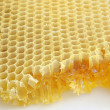 Honeycomb background — Foto de stock #2693182