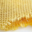 Honeycomb background — Stockfoto #2693182