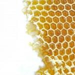 fundo do favo de mel — Foto Stock