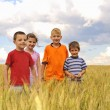 Stock Photo: Smiling children in cereal field