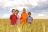 Smiling children in cereal field — Stock Photo