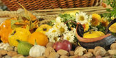 Autumn arrangement with fruits and vegetables — Stock Photo
