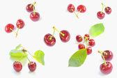 Cerezas en fondo blanco — Foto de Stock