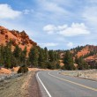 Road through Red Canyon - Stock Photo