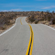 Joshua Tree Road — Stock Photo