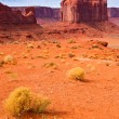 Stock Photo: Monument Valley Landscape
