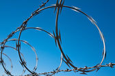 Barbed Wire Spiral — 图库照片