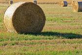 Bales of Hay — Stock Photo