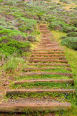 Park-treppe — Stockfoto