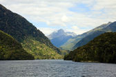 Doubtful Sound — Stock Photo