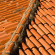 Stock Photo: Rooftop Closeup