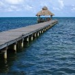 Jetty at Ambergris Caye - Stock Photo
