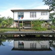 House in the Mangroves of Roatan - Stock Photo
