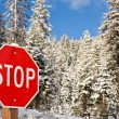 Stop Sign in Winter — Stock Photo #3407487
