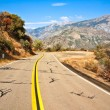 Road to King's Canyon — Stock Photo