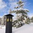 Lantern in the Snow — Stock Photo