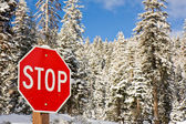 Stop Sign in Winter — Stock fotografie