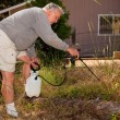 Stock Photo: Senior Gardening