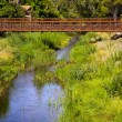 Bridge over a Creek — Stock Photo